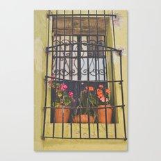 Pretty window in Mexico Canvas Print