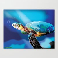 sea turtle Canvas Prints featuring Sea Turtle by Natasha Alexandra Englehardt