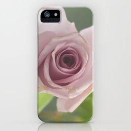 lilac rose iPhone Case