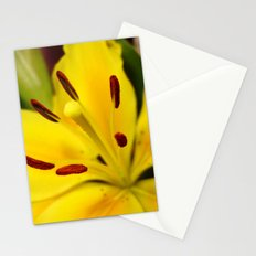 Lillies of the Past Stationery Cards