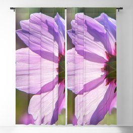 Backlit Flora Blackout Curtain