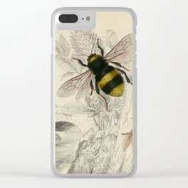 Naturalist Bee And Wasps Clear iPhone Case