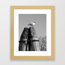 Seafront Framed Art Print
