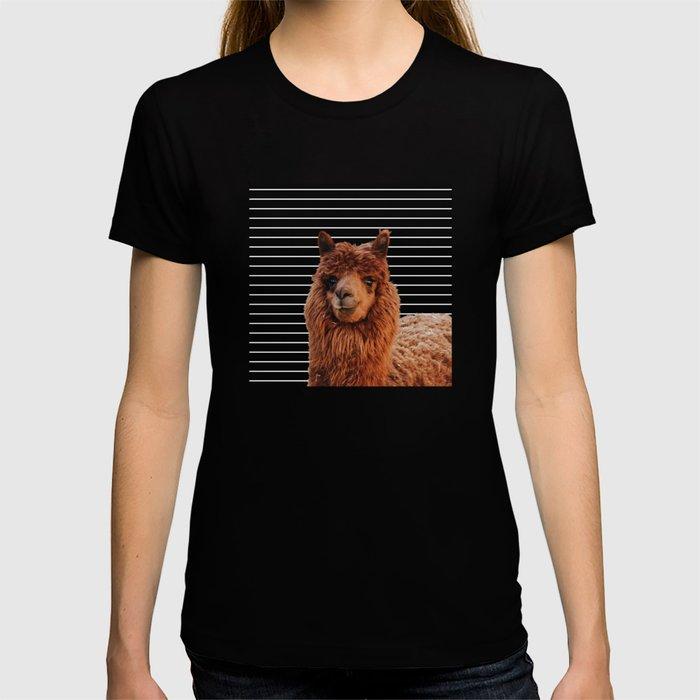 Llama Drama T-shirt