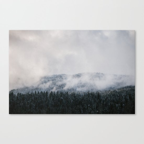 Winter V Canvas Print