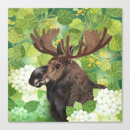 A beautiful moose in green Canvas Print