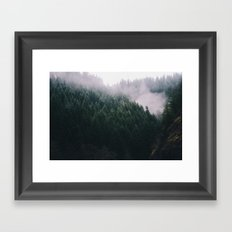 Forest Fog V Framed Art Print