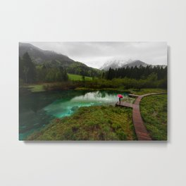Red umbrella green lake Metal Print