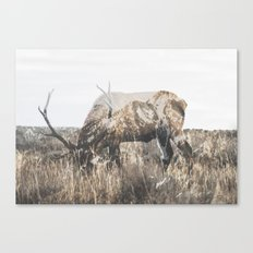 Within Nature III Canvas Print
