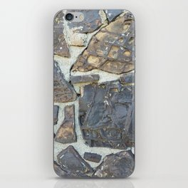 Dinosaur Bone House #1 iPhone Skin