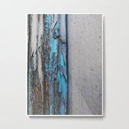 005 Metal Print