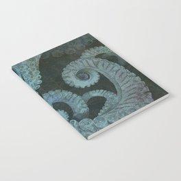 Octopus 2 Notebook