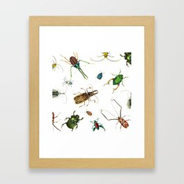 Bug Life - Beetles - Bugs - Insects - Colorful - Insect Pattern Framed Art Print