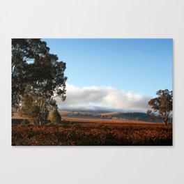 Barossa Valley Sunrise Landscape Canvas Print