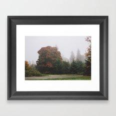 Northwestern Fog Framed Art Print