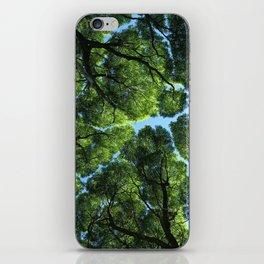 Crack willow iPhone Skin