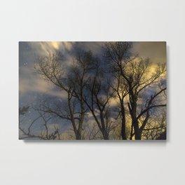 Enchanting Nighttime Trees and Sky Metal Print