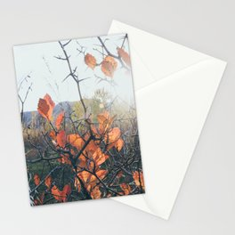 Golden Hour in mid October Stationery Cards