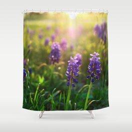 Grape Hyacinths (Muscari) Shower Curtain