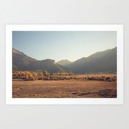 Colorado Gold III Art Print