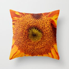 Taken4Granted Throw Pillow