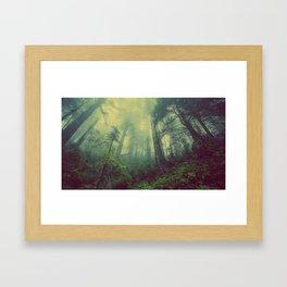 Fey Forest Framed Art Print