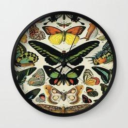 Adolphe Millot Butterfly Vintage Scientific Illustration Old Le Larousse pour tous llustration Wall Clock