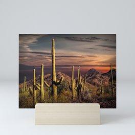 Painted Sky over Saguaro Cactuses in Saguaro National Park Mini Art Print