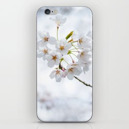 Cherry Blossoms 2 iPhone Skin