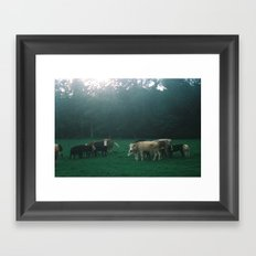 Cowz Framed Art Print