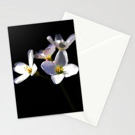 Cardamine Pratensis Flowers Stationery Cards