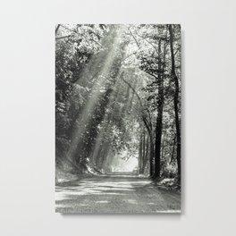Sunshine Road Metal Print