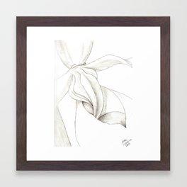 Orchid Center Sketch Framed Art Print