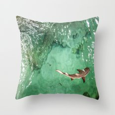 Look at the Shark Throw Pillow