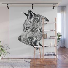 Canis latrans Wall Mural