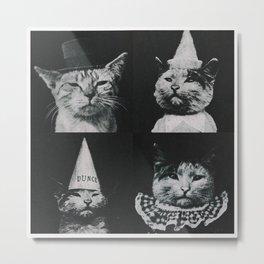 Catnip Metal Print