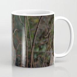 Birds from Pantanal  Chimbum Coffee Mug