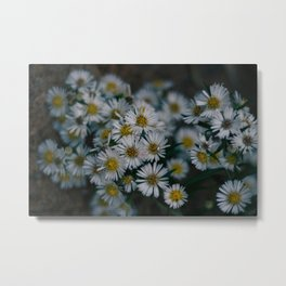 Happily 'Aster' After Metal Print