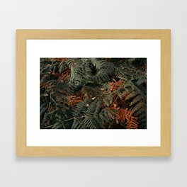 Dark Embrace Framed Art Print