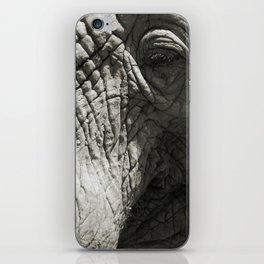 Old Elephant iPhone Skin