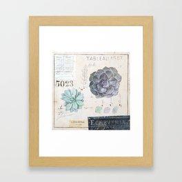 Echeveria Succulent Framed Art Print