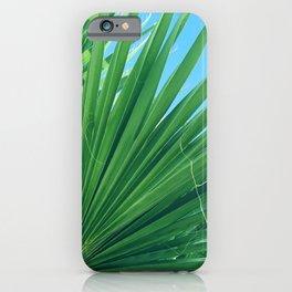 Fan Palm Leaf Against Azur Blue Sky iPhone Case