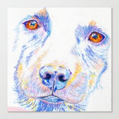 Lotte, the rescue dog Canvas Print