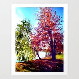 Lake Trees Art Print