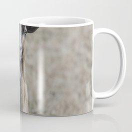 Black Goat and Barbados Blackbelly Sheep, No. 2 Coffee Mug