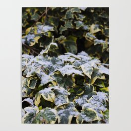 Neve em Londres - 4 Poster