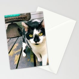 Mister Moo Stationery Cards