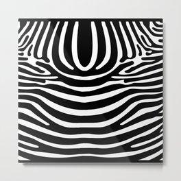 Animal Zebra texture Metal Print