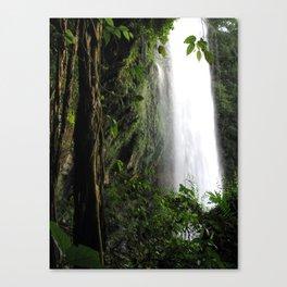 Misol Ha Waterfall Canvas Print