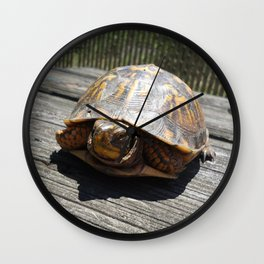 The Turtle That Crashed Our Picnic Wall Clock